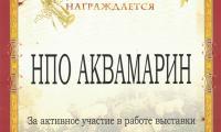 Diploma_10.jpg